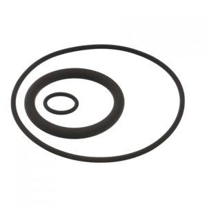 AFM000393 AuraMarine O-ring